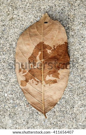 Imprint of the Europe continent map on a browning leaf.  - stock photo