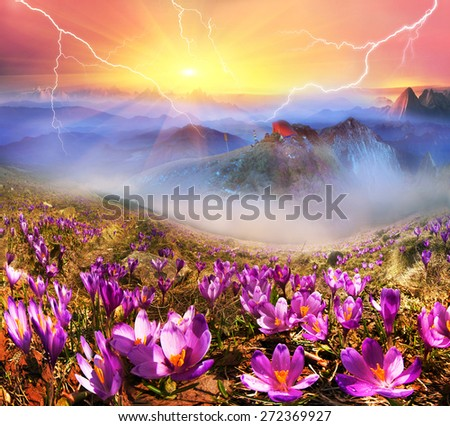 In March-April after a winter in the mountains of unstable weather, and replaced by the warmth, the sun can come quickly alpine cold, strong wind and sleet and then freezing plants and flowers  - stock photo