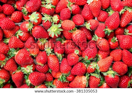 In the frame ripe strawberries in plastic trays, ready for sale. The first strawberries. Top view. Close. Horizontal. Daylight. - stock photo