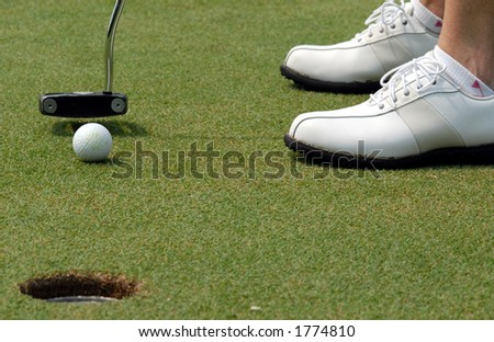In the hole! - stock photo