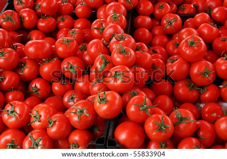 in the market in Turkey - Red tomatoes - stock photo