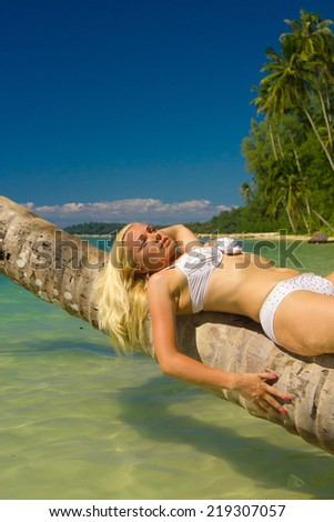 In the Summer Sunshine Exotic Hideaway  - stock photo