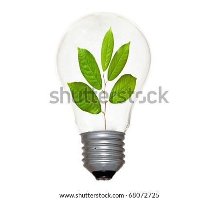 Incandescent light bulb with a tree shoot as the filament - stock photo