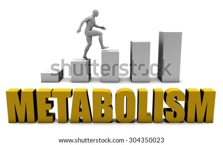 Increase Your Metabolism  or Business Process as Concept - stock photo
