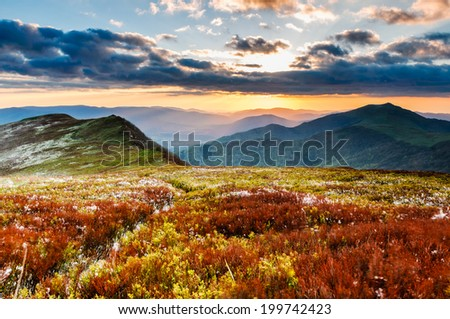 Incredible vivid colours and nice walking trail during sunset in Bieszczady mountain ridge in Poland - stock photo