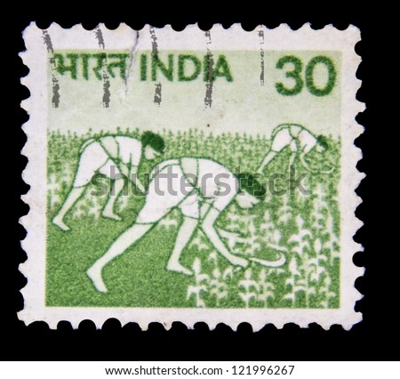 "INDIA - CIRCA 1979: A stamp printed in India shows Women in Rice Field, without inscription, from the series ""Crops and Farming"", circa 1979 - stock photo"