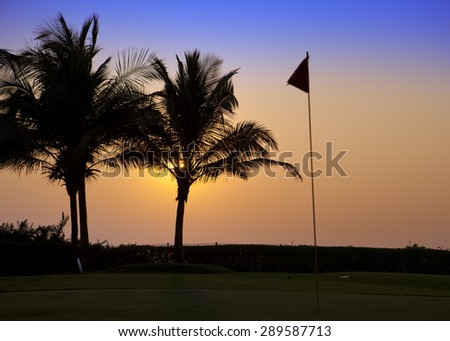 India. Goa. A sunset over palm trees and tags on the golf course - stock photo
