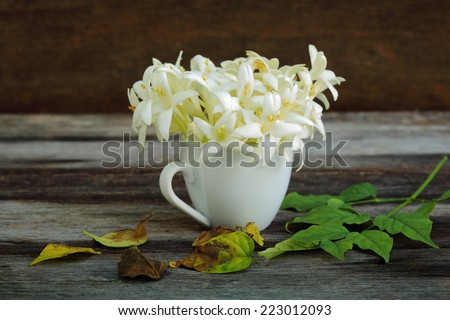 Indian cork tree (Millingtonia hortensis Linn.f) flowers in tea cup with fallen leaves - stock photo