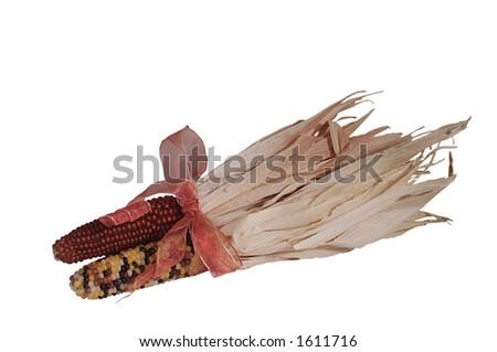 indian corn - stock photo