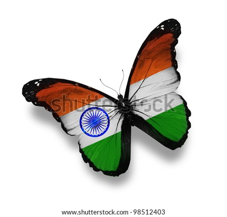 Indian flag butterfly, isolated on white - stock photo