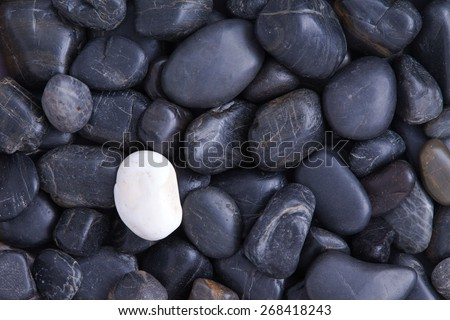 Individuality concept with a full frame background of weathered smooth black basalt pebbles with a single different white quartz stone - stock photo