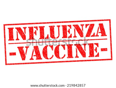 INFLUENZA VACCINE red Rubber Stamp over a white background. - stock photo