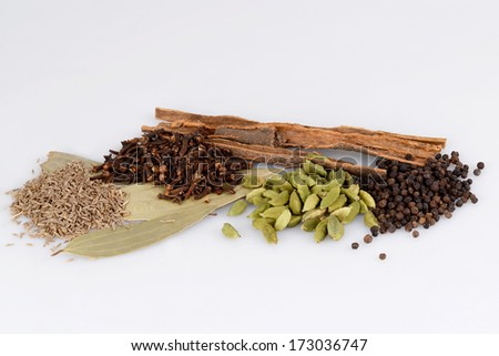 ingredients for garam masala , indian spice mix - stock photo