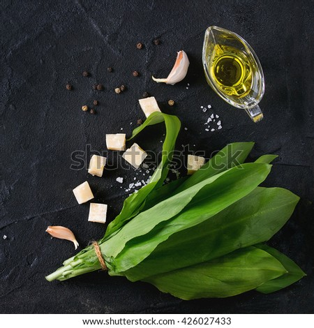 Ingredients for pesto. Bunch of ramson, olive oil, parmesan cheese, garlic, salt and pepper over black textured background with copy space. Flat lay. Square image - stock photo
