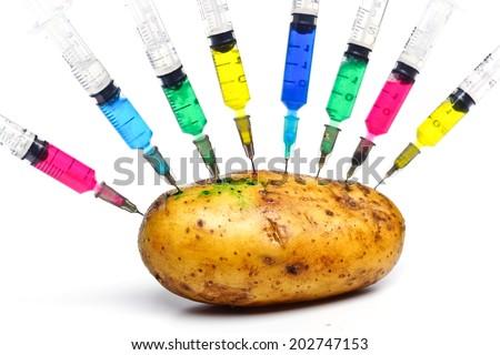 injecting chemical into gmo potato - gmo food - stock photo