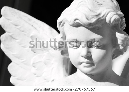 innocent winged angel close up  - stock photo