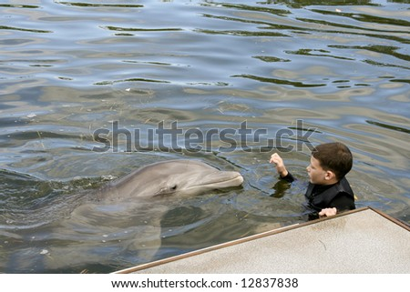 Innocent young boy holds on to the dock with an approaching smiling dolphin - stock photo