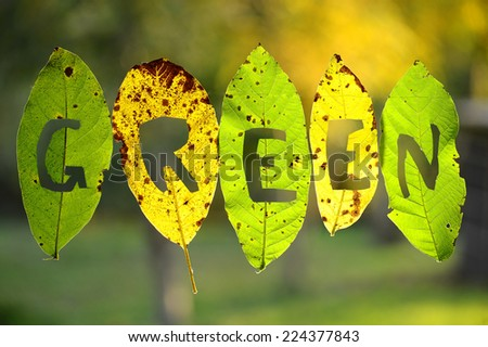 inscription green, cut from autumn leaves - stock photo