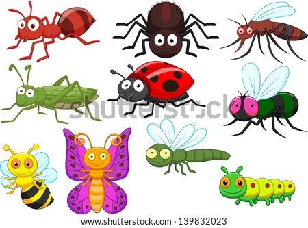 Insect cartoon collection set - stock photo