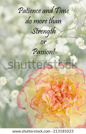 Inspirational quote about life and time by Jean de La Fontaine with beautiful flowers in the background  - stock photo