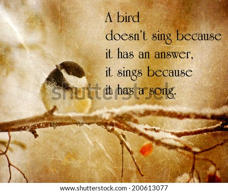 Inspirational quote on nature by Maya Angelo with an antitique textured image of a little chickadee perched on a branch in winter. - stock photo