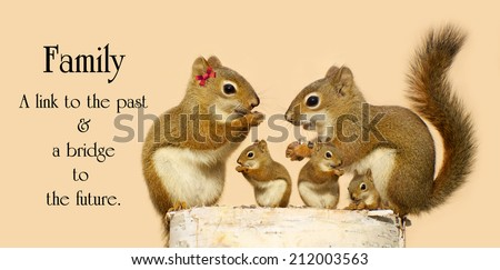 Inspirational quote on the family by an unknown author with a family of squirrels sharing seeds on a birch log. - stock photo