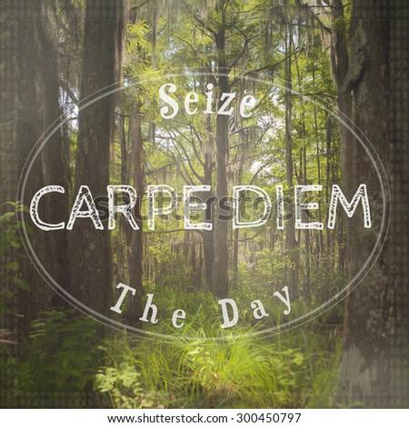 Inspirational Typographic Quote - Seize The Day, Carpe Diem - stock photo