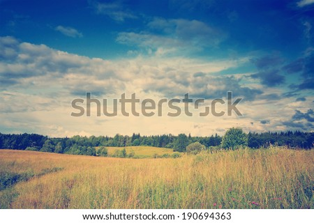 instagram nashville tone Green meadow and forest under blue dramatic sky with clouds - stock photo