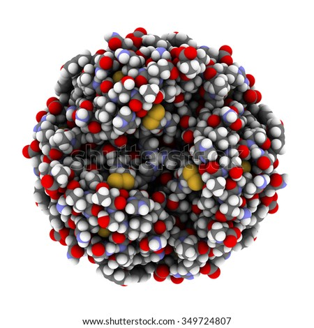 Insulin peptide hormone, chemical structure. Used in treatment of diabetes. Shown in het hexameric form, bound to zinc ions. Atoms are represented as spheres with conventional color coding. - stock photo