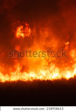 Intense flames from a massive forest fire. Flames light up the night as they rage thru pine tree forests and sage brush. The Carlton Complex wild fire was Washington state's largest fire in history.  - stock photo