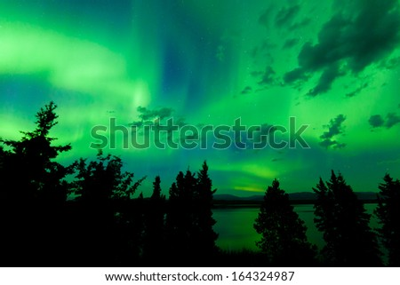Intense green northern lights  Aurora borealis  on night sky with clouds and stars over boreal forest taiga of Lake Laberge  Yukon Territory  Canada - stock photo