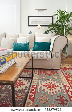 Interior design lifestyle detail of a home living room with white sofa and plants, interior view. House indoors with carpets and picture frame. Aspirational lifestyle home space still life. - stock photo