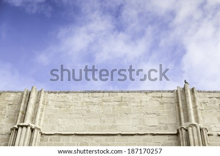 Interior of medieval ruined church, detail of an ancient religious monument abandoned,medieval art in Spain - stock photo
