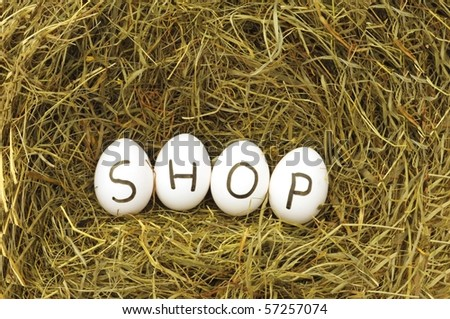 internet or online food shop concept with eggs on green hey - stock photo