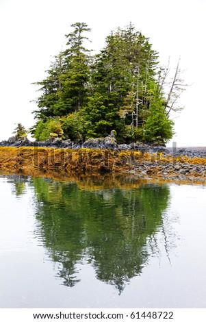 Intertidal exposure of small island near Sitka, Alaska - stock photo