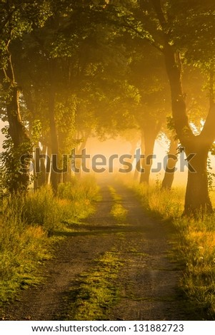 into the unknown - stock photo