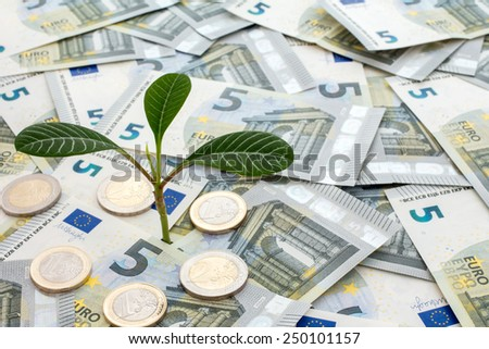 Investment concept. Plant growing from euro currency. - stock photo