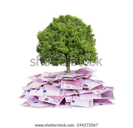 Investment concept, tree growing out of pile of euro bills - stock photo