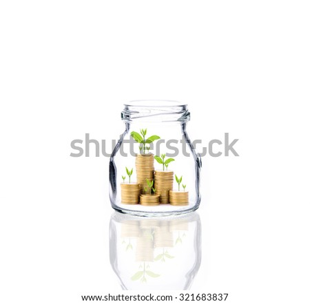 Investment growth concept,Golden coins and seed in clear bottle over white background - stock photo