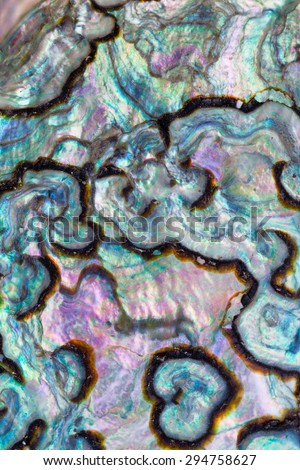Iridescent nacre mother-of-pearl inner side of Paua, Perlemoen or Abalone shell macro background texture pattern - stock photo