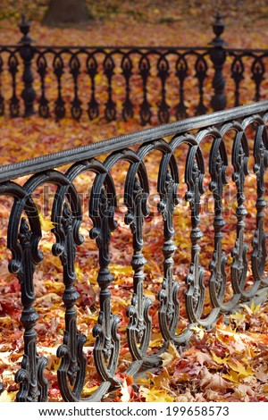 Iron Fence, Autumn Leaves - stock photo