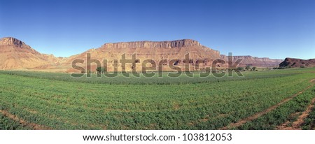 Irrigated field, Colorado River and Red Rock along Route 28, Utah - stock photo