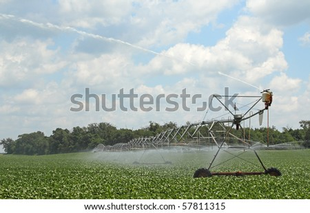 Irrigating a soybean field against a blue sky with clouds - stock photo