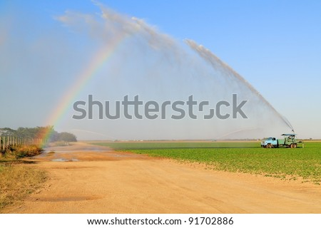 Irrigation of farmland to ensure the quality of the crop of squash with room for your text - stock photo