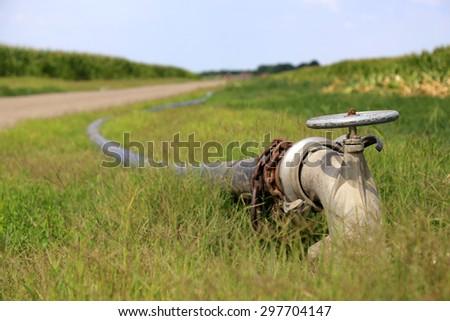 irrigation pipe on corn field - stock photo