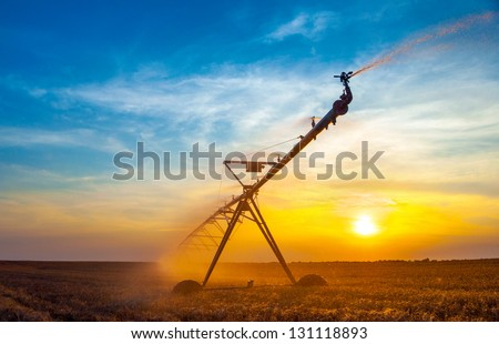 Irrigation pivot on the wheat field at summer sunrise. - stock photo