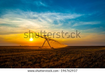 Irrigation pivot on the wheat field at sunset. - stock photo