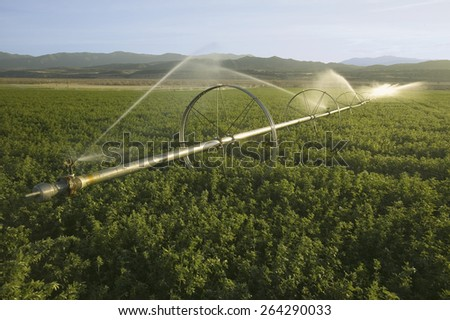 Irrigation sprinklers running in an agricultural field off of Highway 33 in Ventura County near Cuyama, California. - stock photo