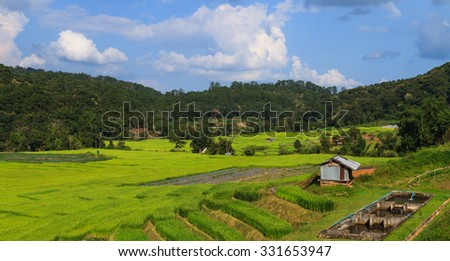 Irrigation system for paddy and fishery - stock photo