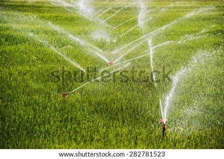 Irrigation system on a industrial farm - stock photo